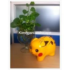 Heo pikachu
